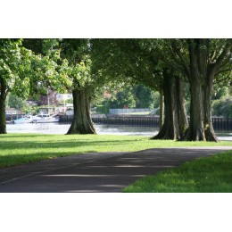 Riverside Park, Print and Canvas